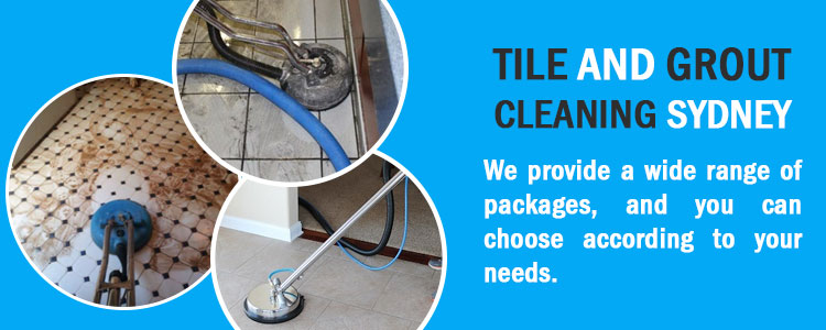 Tile Grout Cleaning High Range