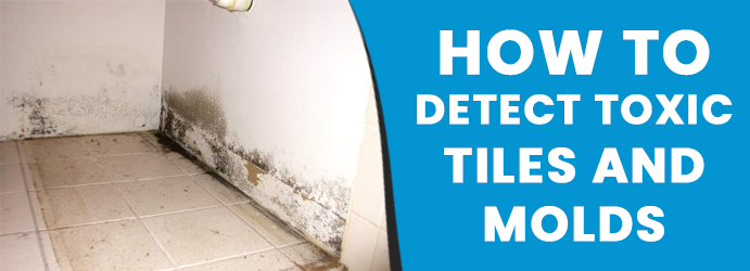 Detect Toxic Tiles and Molds Melbourne