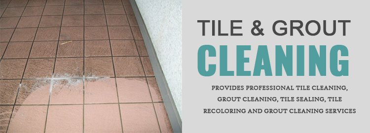 Tile Cleaning Services Sylvester