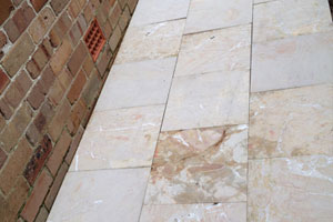 Tile Mould & Algae Treatment Granton