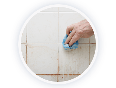 Mould And Allergens Removal