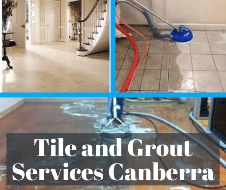 Tile and Grout Services Holder