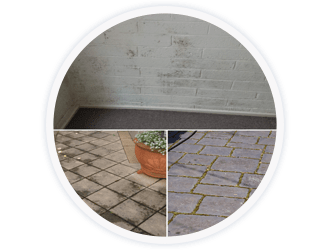 Tile Mould Algae Treatment